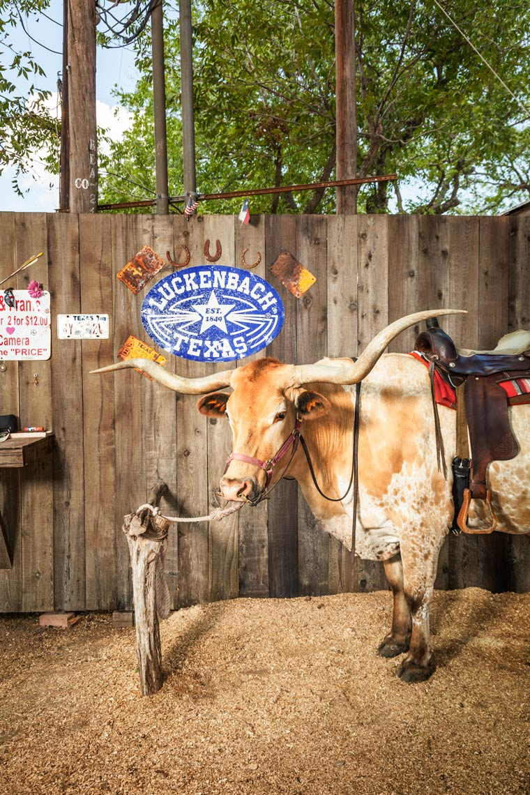TEXAS HILL COUNTRY, LUCKENBACH